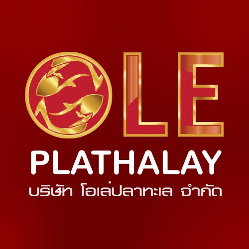 logo ฮวงจุ้ย
